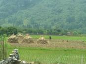 Guilin Yangshuo 1 013